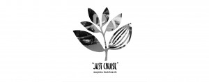 JUST-CRUISE-Blog-cover